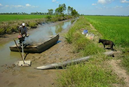 Xâm nhập mặn không phải là dấu chấm hết cho đồng bằng sông Cửu Long (1/3/2016)