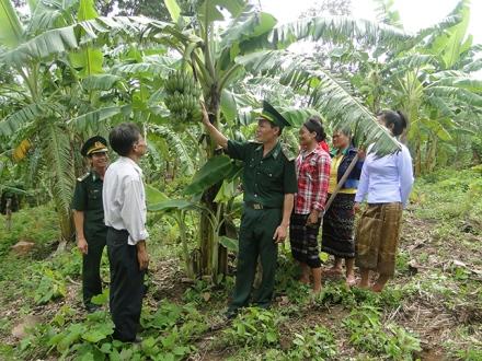 Những hỗ trợ của Bộ đội Biên phòng Quảng Trị đối với người dân vùng biên.