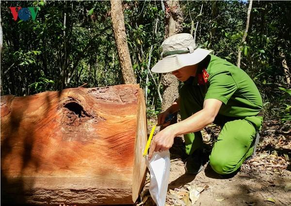 Căn bệnh sợ trách nhiệm và thói quan liêu của cơ quan chức năng 2 tỉnh Gia Lai và Kon Tum (15/2/2017)