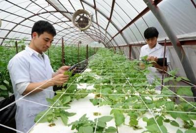 Diễn đàn kinh tế ngày 14/12/2014: Khoa học công nghệ trong nông nghiệp, góc nhìn từ nhà khoa học