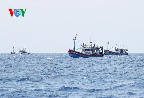 Tai nạn tàu cá: Thảm họa trên biển do sự chủ quan (01/4/2016)