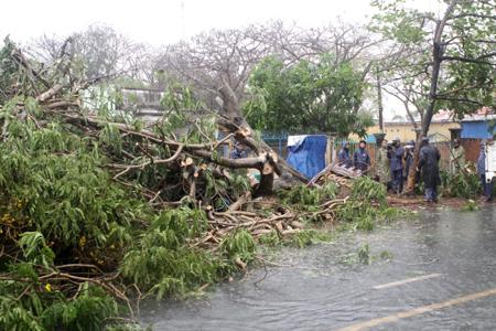Thời sự trưa ngày 17/9/2014: Sau khi đổ bộ vào bờ, bão số 3 gây thiệt hại hàng nghìn hec ta lúa, một số địa phương xảy ra tình trạng ngập úng