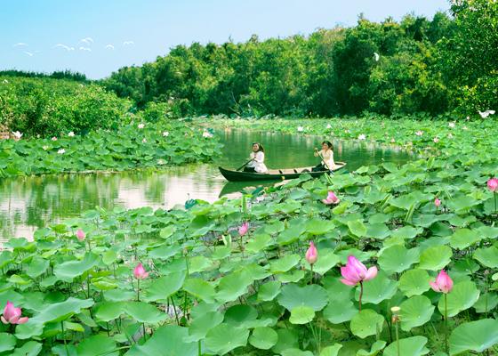 Diễn đàn kinh tế ngày 14/9/2014: Đồng Tháp - Đánh thức tiềm năng du lịch đất sen hồng