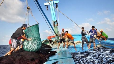 Biển đảo Việt Nam ngày 13/8/2014: Phỏng vấn Thứ trưởng Bộ Nông nghiệp và Phát triển nông thôn  Vũ Văn Tám về thực hiện chính sách hỗ trợ ngư dân và phát triển ngành thủy sản một cách toàn diện
