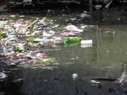 Môi trường và phát triển ngày 11/8/2014: Kiên quyết xử lý các vi phạm về tài nguyên môi trường