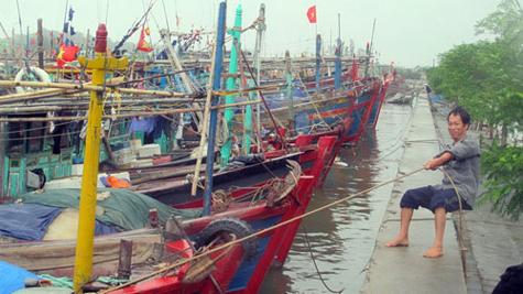 Thời sự đêm ngày 27/8/2014: Các tỉnh, thành phố từ Quảng Ninh đến Khánh Hòa theo dõi chặt chẽ diễn biến của vùng áp thấp