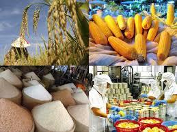 Việt Nam trong tuần ngày 13/9/2014: Nâng tầm nông sản Việt Nam và nâng cao nhận thức của người dân về vấn đề an toàn nông sản