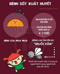 Bộ Y tế khuyến cáo người dân thực hiện 6 biện pháp chính để phòng chống dịch sốt xuất huyết. (Thời sự chiều ngày 7/10/2015)