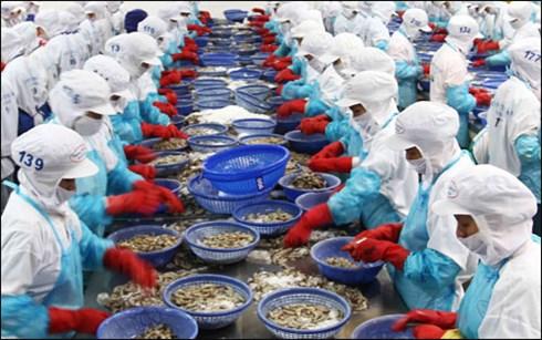Xuất khẩu thủy sản Việt Nam năm 2015 khó phục hồi và hướng khắc phục.