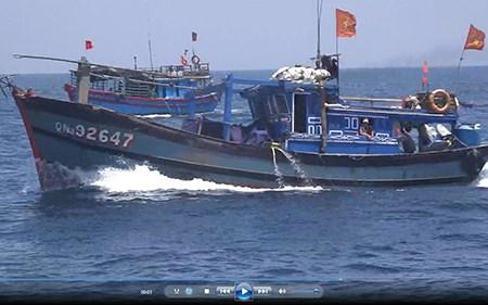Thời sự đêm ngày 14/6/2015: Truy tìm tàu hàng đâm vỡ mạn trái tàu cá QNa 92647, khiến 1 ngư dân thiệt mạng, 3 người khác bị thương.