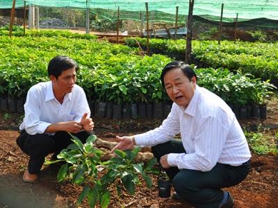 Tư vấn về chuyển đổi cơ cấu cây trồng vật nuôi thích ứng với biến đổi khí hậu. (Chuyên gia của bạn ngày 01/7/2015)
