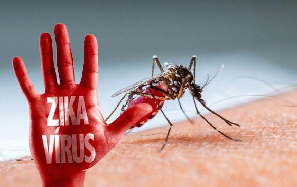 Cẩn trọng với diễn biến của dịch bệnh do vi rút Zika (24/10/2016)
