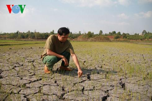 Theo dự báo của Ban chỉ đạo Phòng chống thiên tai, hạn hán và mặn xâm thực ở Đồng bằng sông Cửu Long, Tây Nguyên và Nam Trung bộ sẽ kéo dài đến tháng 9 tới, mực nước sông có thể giảm hơn 90% (Thời sự đêm 17/4/2016)