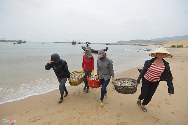 Khắc phục hậu quả từ vụ cá chết hàng loạt tại miền Trung. (30/4/2016)