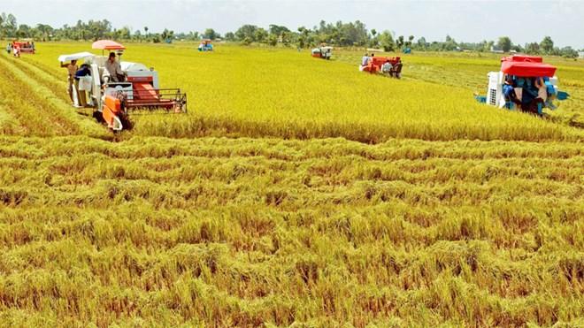 Gỡ dần nút thắt đưa doanh nghiệp đầu tư vào nông nghiệp. (10/5/2016)