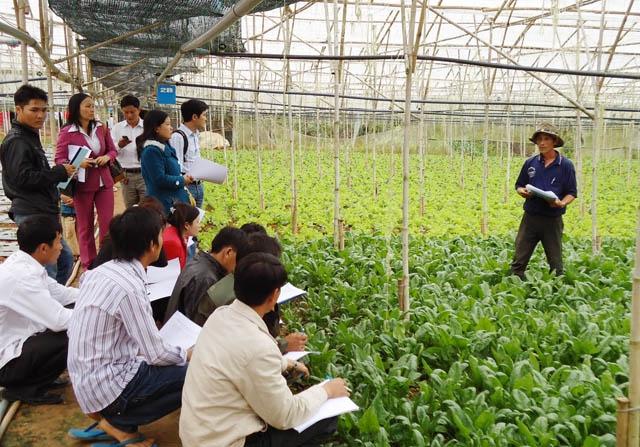 Lâm Đồng thay đổi tư duy trong sản xuất nông nghiệp để thích ứng với biến đổi khí hậu. (27/5/2016)