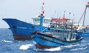 Việt Nam yêu cầu Trung Quốc bồi thường vụ tàu cá Quảng Ngãi bị đâm chìm tại vùng biển Hoàng Sa (Thời sự sáng 14/7/2016)
