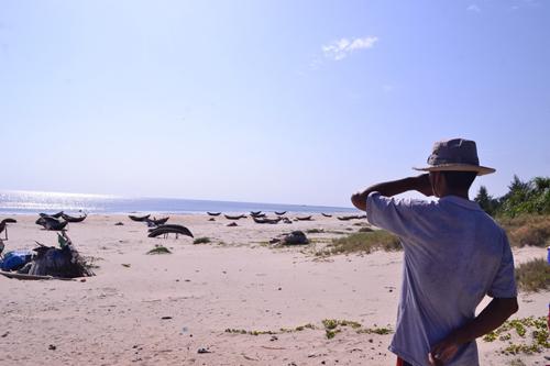 Bộ Lao động Thương binh và Xã hội sẽ có Đề án trình Chính phủ chính sách đào tạo nghề, chuyển đổi nghề cho ngư dân 4 tỉnh Bắc Trung bộ bị ảnh hưởng sự cố môi trường biển. (Thời sự chiều 4/9/2016)