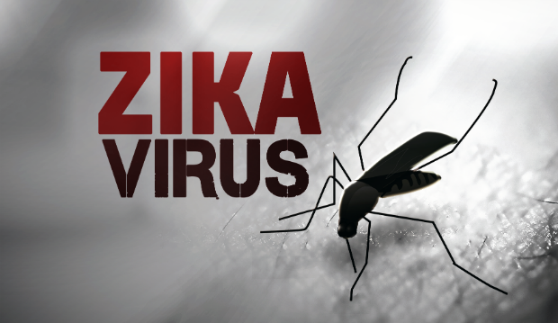 Bộ Y tế tổ chức cuộc họp trực tuyến nhằm tăng cường giám sát phát hiện sớm trường hợp nhiễm virus Zika (Thời sự trưa 3/9/2016)