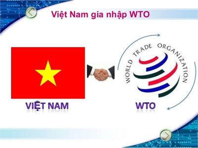 Bài học kinh nghiệm sau 10 năm gia nhập Tổ chức Thương mại thế giới (WTO) (11/1/2017)