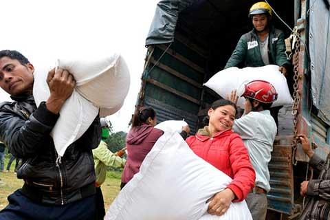 Gần 1 triệu người nghèo được Chính phủ hỗ trợ gạo dịp Tết Nguyên đán Đinh Dậu 2017 (Thời sự chiều 21/1/2017)