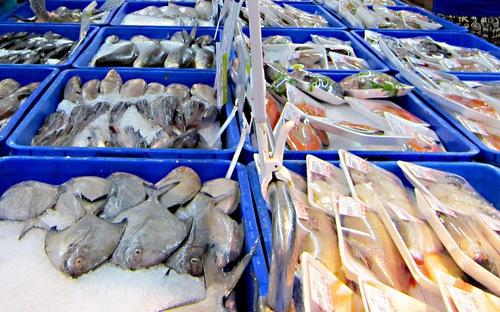 EU rút thẻ vàng với thủy sản Việt Nam: Cấp bách hoàn thiện hệ thống quản lý nghề cá (27/10/2017)