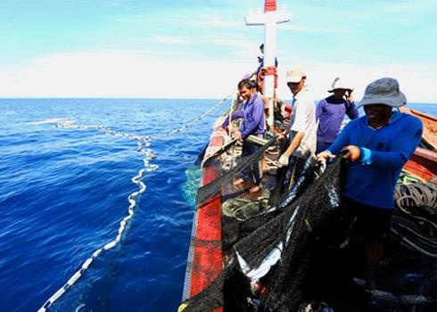 Cấm đánh bắt thủy sản mùa sinh sản - cần chính sách hài hòa (24/3/2017)