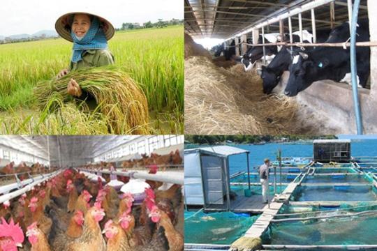 Cần tháo gỡ những rào cản cho doanh nghiệp đầu tư vào nông nghiệp (24/3/2017)