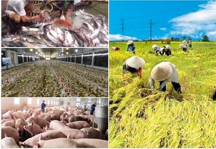 Sửa đổi chính sách, tháo gỡ điểm nghẽn lớn nhất trong sản xuất nông nghiệp (16/3/2017)