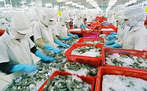 Giải pháp nào để ngành tôm hoàn thành mục tiêu xuát khẩu 10 tỷ USD (07/3/2017)