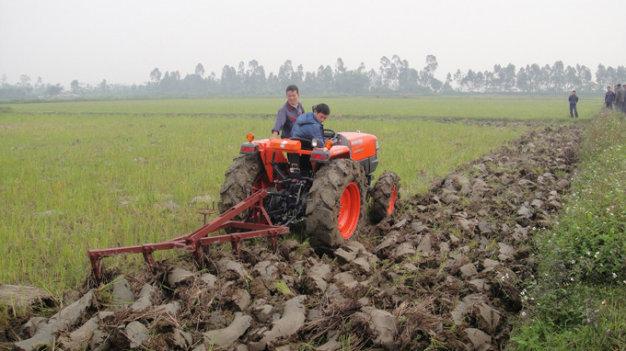 Tích tụ ruộng đất: Nông dân đứng ở đâu? (14/3/2017)