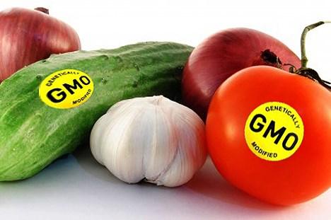 Cần thiết phải minh bạch thông tin về cây trồng và thực phẩm biến đổi gen với người tiêu dùng (20/4/2017)
