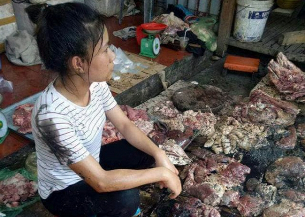 Uỷ ban nhân dân thành phố Hải Phòng họp báo công bố thông tin chính thức về vụ việc cản trở, hất chất bẩn vào quầy kinh doanh thịt lợn tại chợ Lương Văn Can, quận Ngô Quyền (Thời sự trưa 13/5/2017)