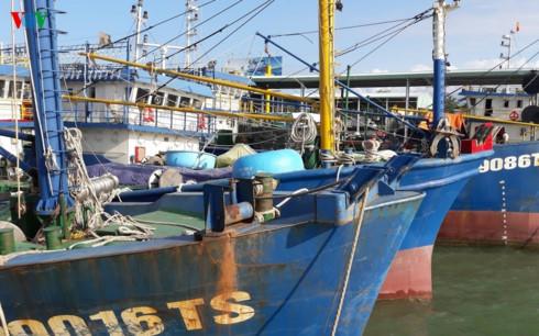 Lần đầu tiên ngư dân thắng kiện đơn vị đóng tàu tàu vỏ thép (Thời sự sáng 31/8/2017)