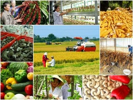 Chính sách xoay trục ngành nông nghiệp liệu có tạo bước ngoặt trong năm 2018 (14/1/2018)