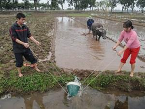 Lấy nước gieo cấy vụ xuân: Tích cực khắc phục tình trạng ô nhiễm nguồn nước (22/1/2018)