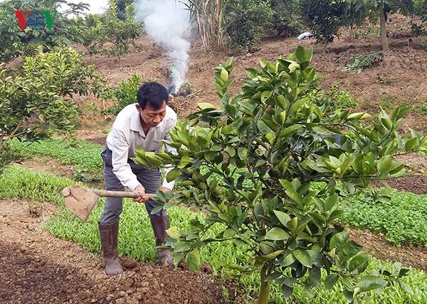 Nỗ lực xây dựng nông thôn mới nơi vùng lũ Mường La (29/1/2018)