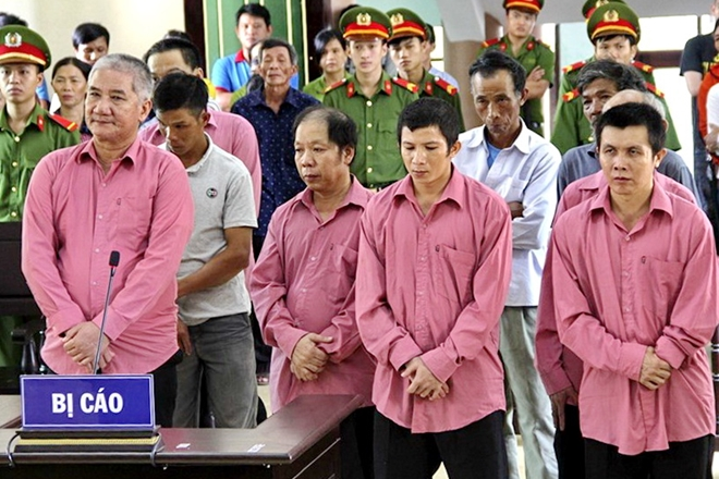 9 bị cáo trong vụ phá rừng lớn nhất ở Bình Định lãnh án 81 năm tù (22/10/2018)