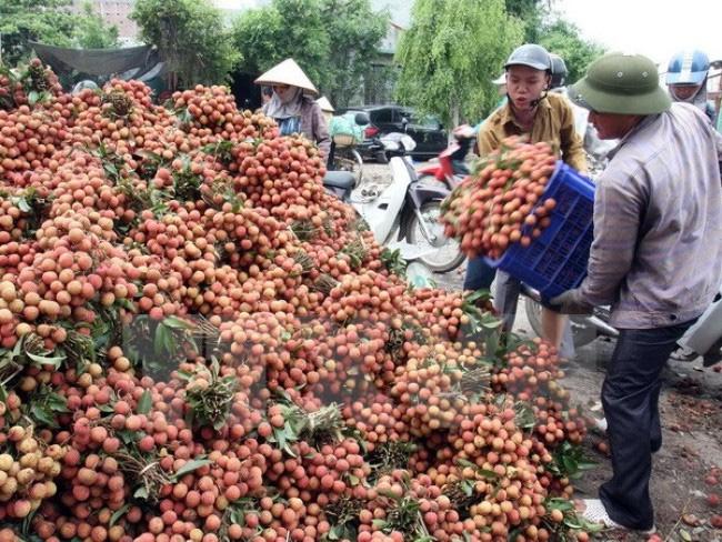 Tăng cường các chính sách hỗ trợ nông sản Việt (30/10/2018)