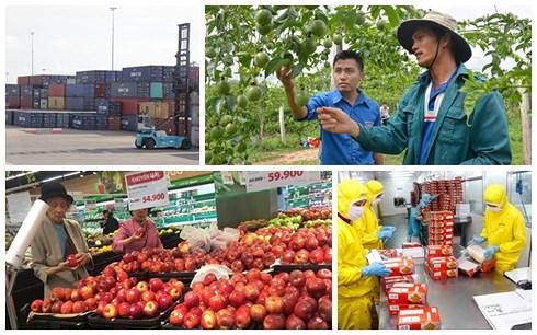 Theo công bố của Ngân hàng Thế giới, nền kinh tế Việt Nam được dự báo sẽ tăng trưởng 6,8% trong năm nay (Thời sự chiều 4/10/2018)