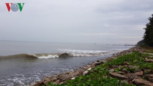 Đêm nay, tâm bão số 9 ngay trên vùng biển các tỉnh từ Bình Thuận đến Bến Tre. Các địa phương trong vùng ảnh hưởng chủ động ứng phó với bão (Thời sự đêm 24/11/2018)