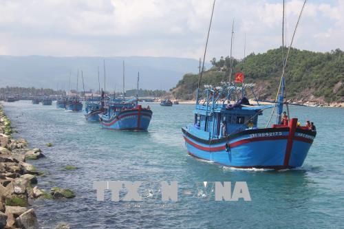 Khó khăn trong công tác đào tạo nghề khai thác thủy sản ở Bình Định (27/11/2018)