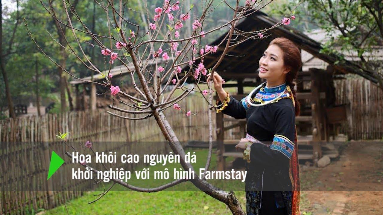 Dự án Farmstay - mô hình du lịch nông nghiệp bền vững cho đồng bào dân tộc thiểu số ở Đồng Văn, Hà Giang (16/11/2018)