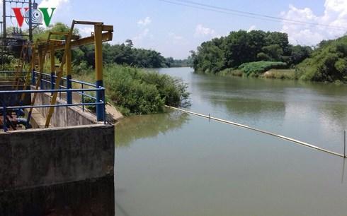 """Đà Nẵng: Tình trạng khan hiếm nước do nước bị nhiễm mặn ảnh hưởng đến sinh hoạt và sản xuất của người dân. Trong khi đó, Nhà máy nước Hòa Liên với công suất 120 ngàn mét khối/ngày đêm vẫn """"treo"""" hết năm này qua năm khác (Thời sự trưa 8/11/2018)"""