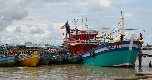 Thực trạng triển khai lắp đặt các thiết bị giám sát định vị tàu cá (10/12/2018)