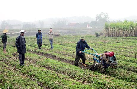 Đẩy mạnh tái cơ cấu nông nghiệp gắn với xây dựng nông thôn mới (4/12/2018)