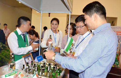 Chiến lược mới cho dự án Khởi nghiệp rượu chuối Tân Dân, tỉnh Bắc Kạn (9/12/2018)