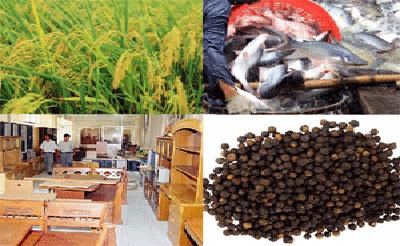 Xuất khẩu nông sản Việt Nam: Nhiều điểm nghẽn cần tháo gỡ (11/3/2018)