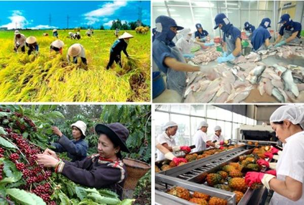 Ngành nông nghiệp tăng trưởng bứt phá trong quý I nhưng không dễ dàng trong những quý tiếp theo (5/4/2018)