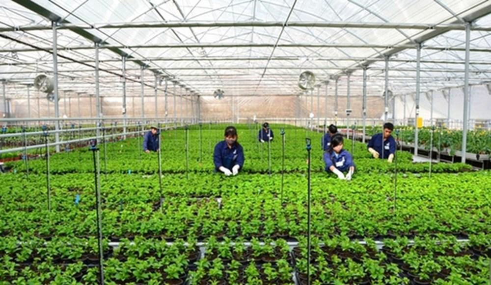 Đẩy mạnh sản xuất nông nghiệp sạch, phát triển nông nghiệp bền vững (22/4/2018)
